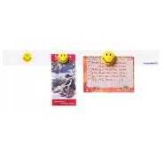 Banda magnetica 6 magneti Smiley 1000mm MGN